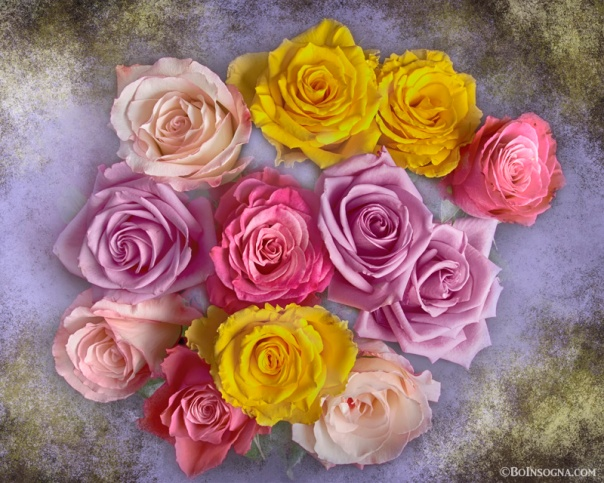 Colorful Bouquet Of Roses
