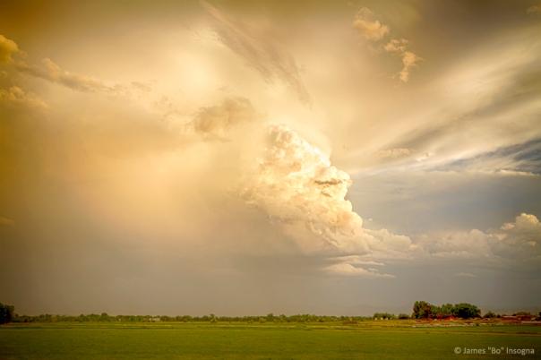 Thunderstorm Rears Ugly Head