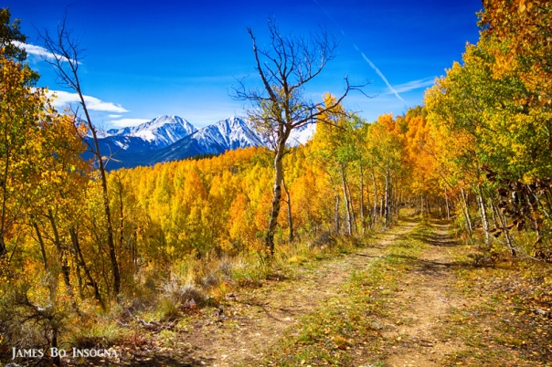 Colorado Backcountry Autumn View