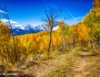 Colorado Back Country Autumn View