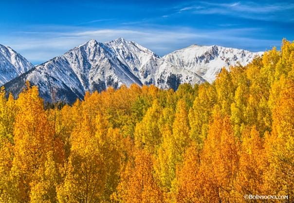 Colorado Rocky Mountain Autumn Beauty