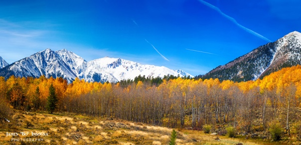 Colorado Rocky Mountain Independence Pass Autumn Pano 1