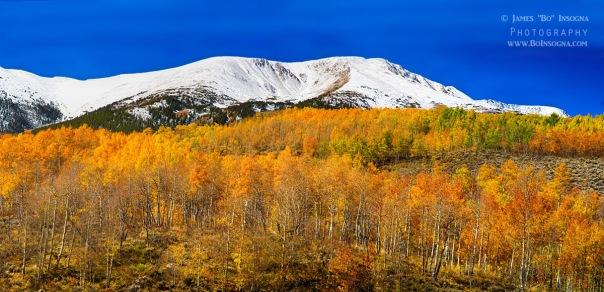 Colorado Rocky Mountain Independence Pass Autumn Pano 2