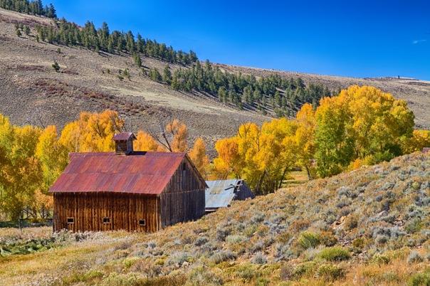 Colorado Rustic Rural Barn with Autumn Colors