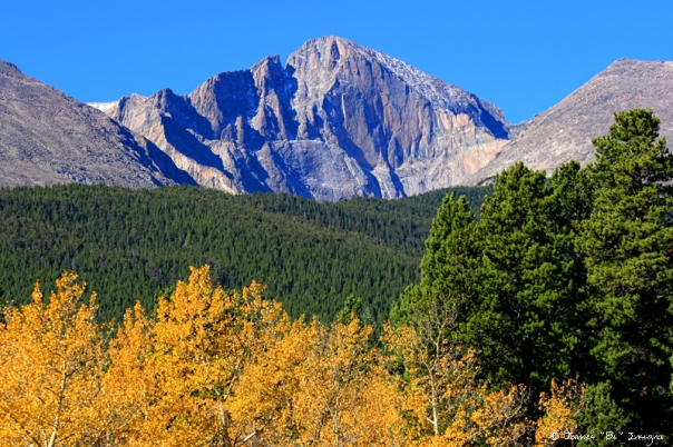 Longs Peak Autumn Aspen Landscape View - James Bo Insogna