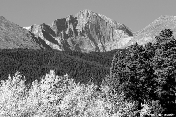 Longs Peak Autumn Aspen Landscape View BW - James Bo Insogna