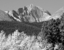 Longs Peak 14256 Ft Autumn Aspen View BW