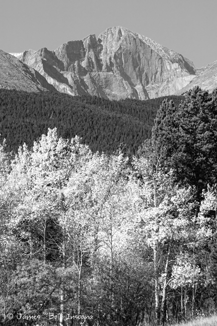 Longs Peak Autumn Scenic BW View - James Bo Insogna