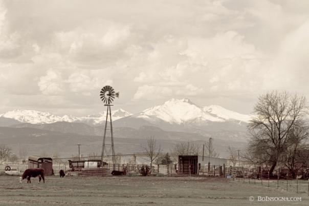 Longs Peak Old Country VIew