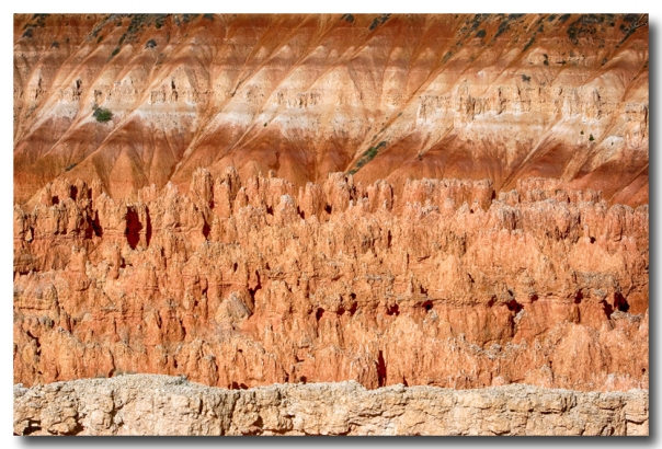Bryce Canyon Contrast