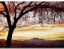 Colorful Sunset Sky And LongsPeak