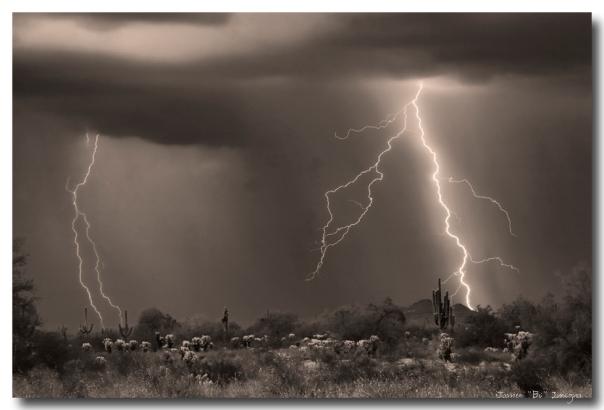 Sonoran Desert Storm - Sepia - James Bo Insogna