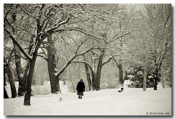 Walking the Dog in a Winter Wonderland art print