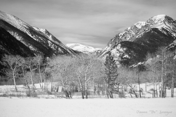 Art Print Colorado Rocky Mountain Winter Horseshoe Park BW