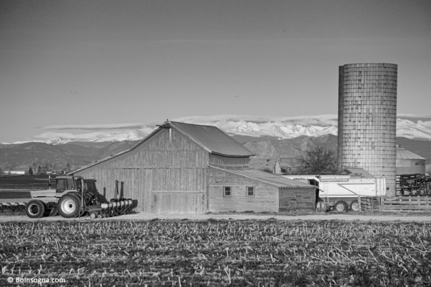 Colorado Front Range Farming BW