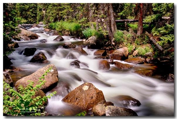 Cascading Rocky Mountain Forest Creek Art print