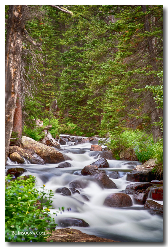 Mountain Stream Photography Prints