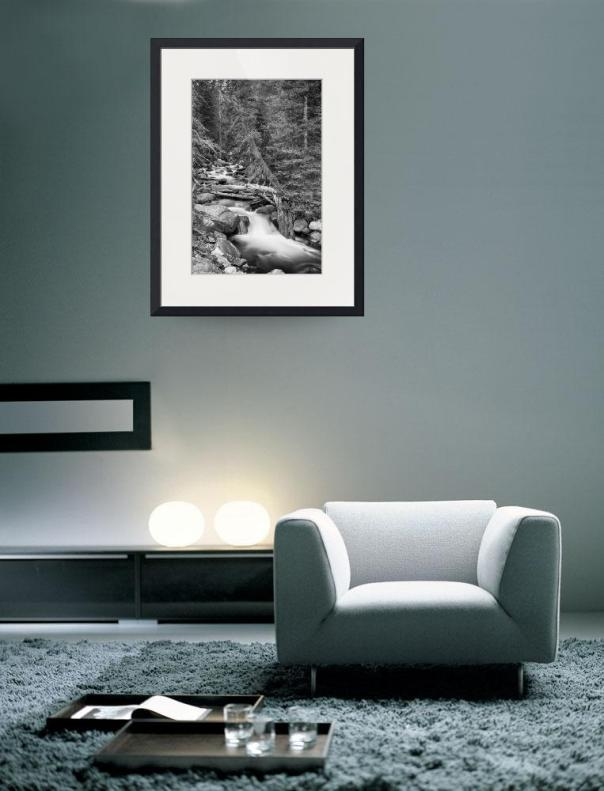 Rocky Mountain Stream in Black and White Art