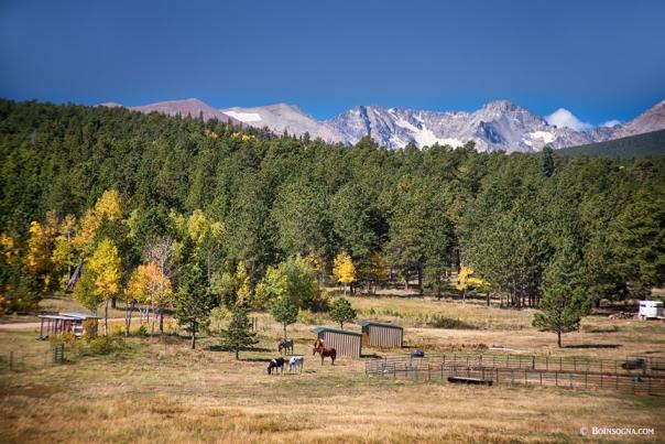 Colorado High Country Landscape Acrylic Print
