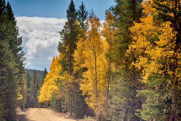 Back Road To Autumn Print