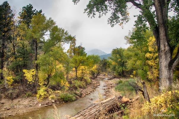 Colorado Canyon Gazing