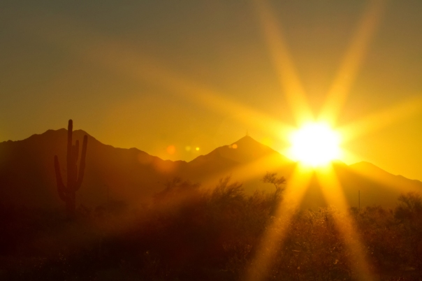 Arizona Sun Fine Art Print
