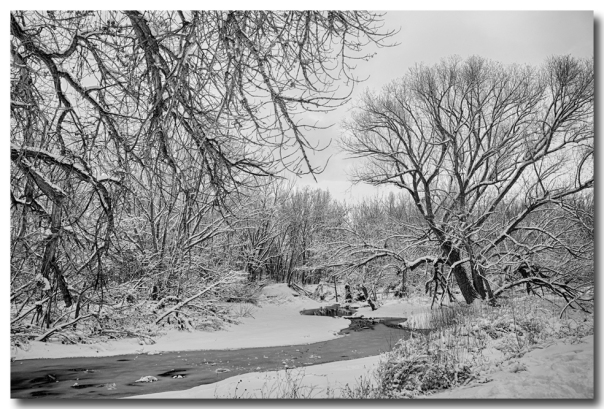 Winter Creekin Black and White