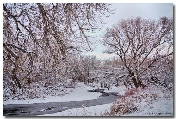 Winter St Vrain River Boulder County Colorado Art Print