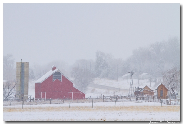 Snowy Country Winter Day Art Print