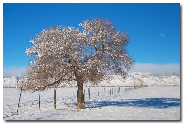 Winter Season On The Range Snow And Blue Sky Art Prints