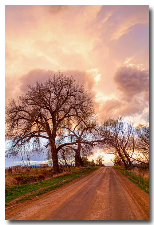 Dirt Road Cloud Cruising Art Prints