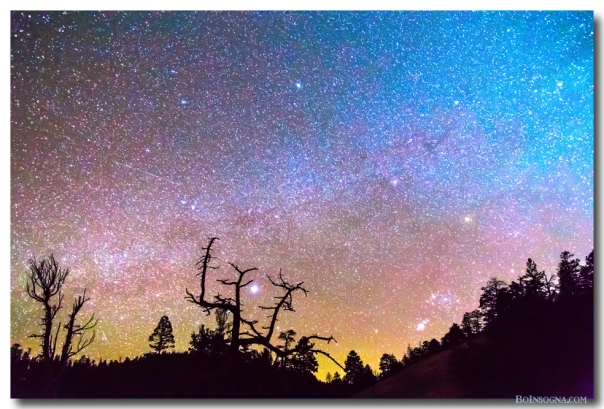 Galaxy Night Photography Art Print