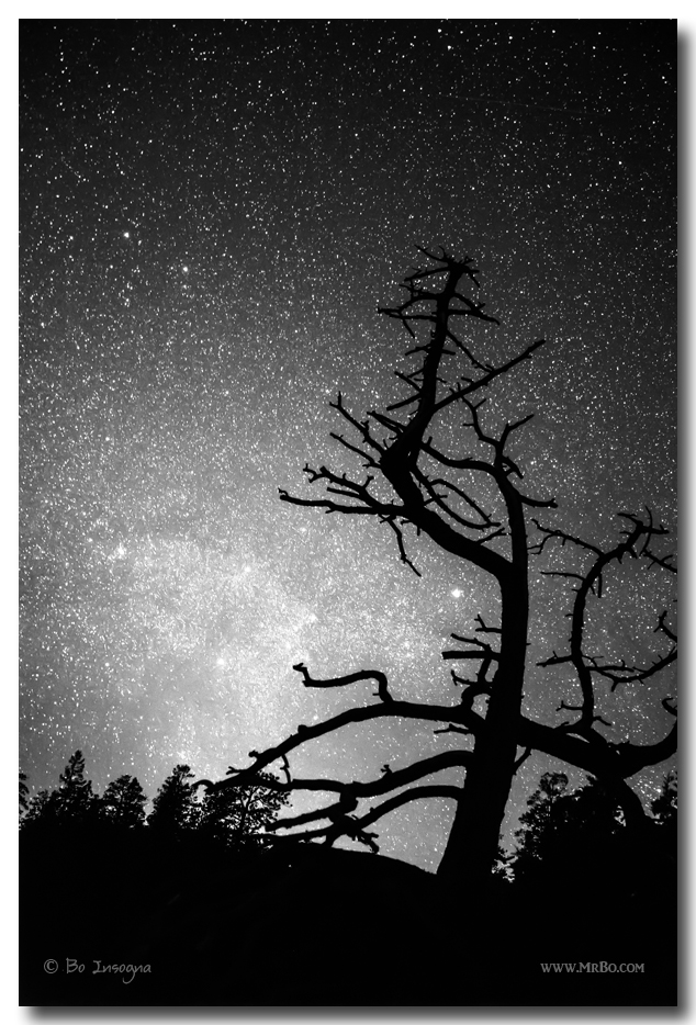 Astrophotography Night Black and White Portrait View