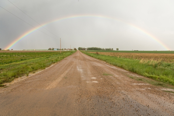 Drive through a country rainbow art print