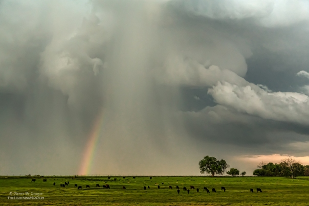 Stormin Rainbow Art Print