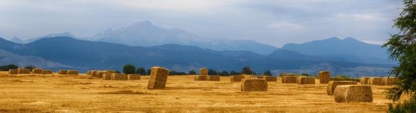 Colorado Agriculture Farming Panorama View