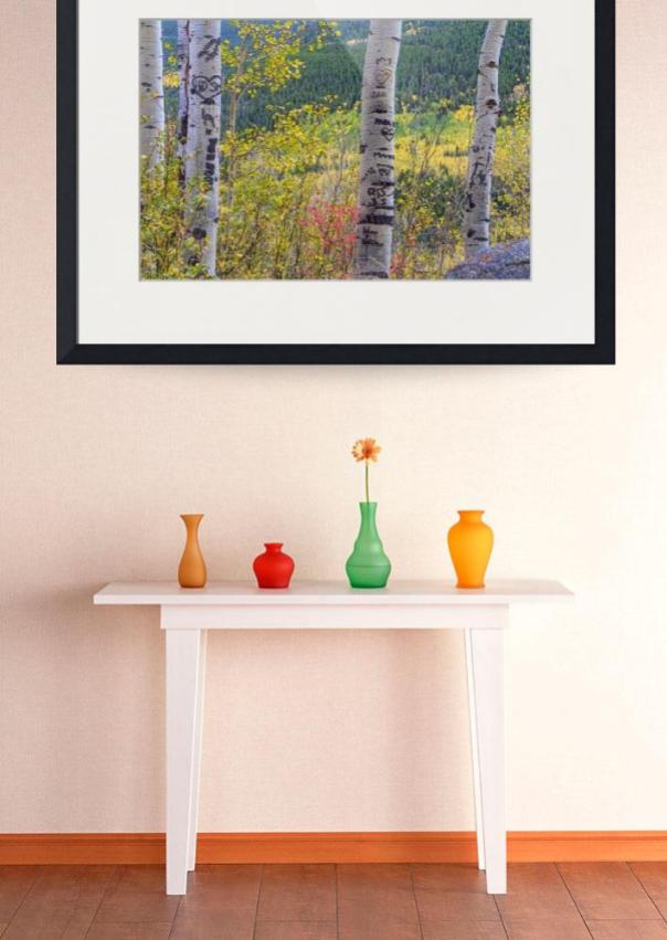 Carved-Names-and-Initials-in-Autumn-Aspen-Trees_art print