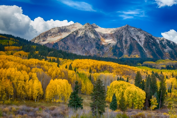 Colorado Rocky Mountain Autumn Season Beauty Art Print