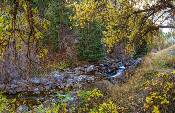 Boulder Creek Autumn View