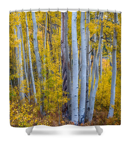 Check out this COOL Golden Wilderness Shower Curtain