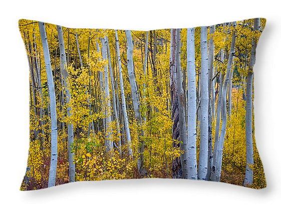 "Love these Golden Wilderness Throw Pillow 20"" x 14"" too!"