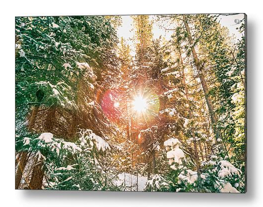 Colorado Rocky Mountain Snow And Sunshine Acrylic Print