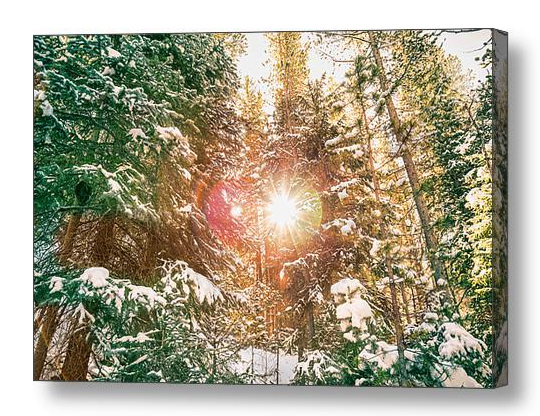 Colorado Rocky Mountain Snow And Sunshine Canvas Print