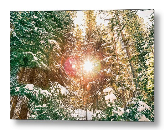 Colorado Rocky Mountain Snow And Sunshine Metal Art Print