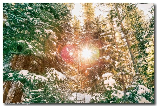 Colorado Rocky Mountain Snow and Sunshine