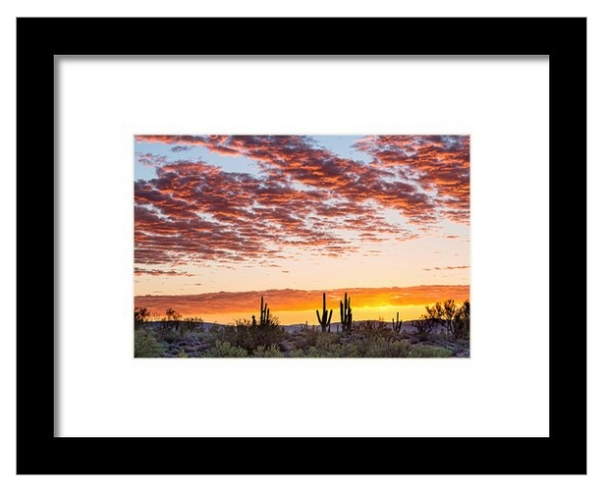 Colorful Sonoran Desert Sunrise Framed Print