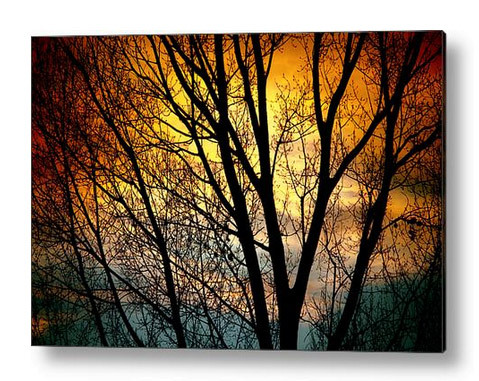 Colorful Sunset Silhouette Acrylic Print