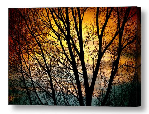 Colorful Sunset Silhouette Canvas Print