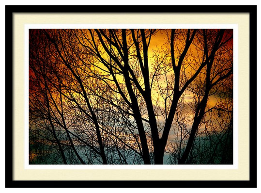 Colorful Sunset Silhouette Framed Print