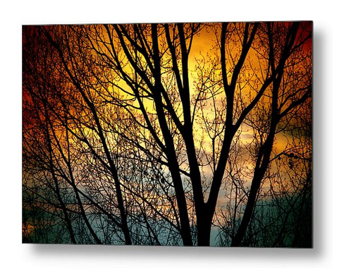 Colorful Sunset Silhouette Metal Print